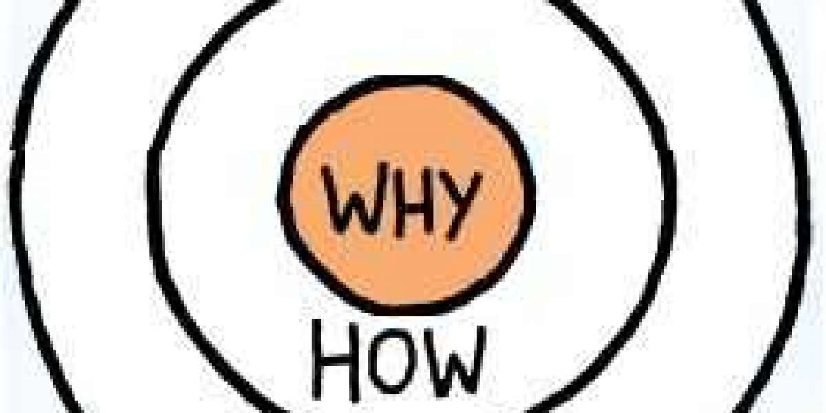 Simon Sinek Start with WHY Book Review